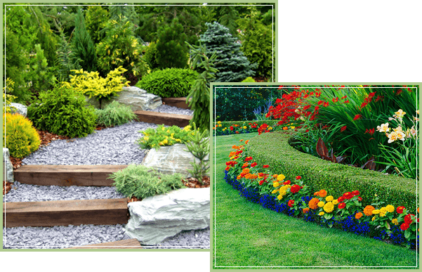 Welcome To Proscape Landscaping